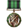 Silver Shield, 1st Class Medal