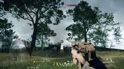 BF1 Commo Rose 3