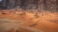 Sinai Desert 17