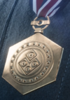 Joint Operations Merit Medal