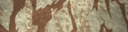 BF4 Reed Desert Paint