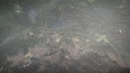 Monte Grappa 01