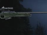 SV-98/Bad Company