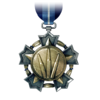 BF3 Assault Service Medal