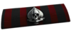 BF4 Ace Squad Ribbon