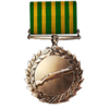 Scout Order of Valor Medal