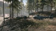 Backwoods 15
