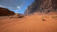 Sinai Desert 14