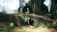 Argonne Forest Abbey Ruin 07