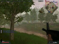 Bfv 8