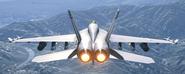 F18TPV