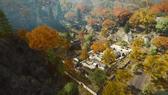 Dragon Valley 2015 18
