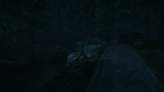 Night Woods 10