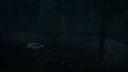 Night Woods 08