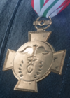 Field Surgery Merit Medal