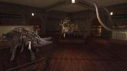 Museum 19