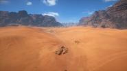 Sinai Desert 27