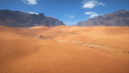 Sinai Desert 28