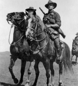 WW1 Horse