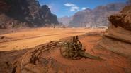 Sinai Desert Nelson Ridge 06