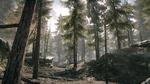Backwoods 22