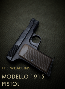 Modello 1915 Codex Entry