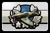 BFH Plane Mastery III