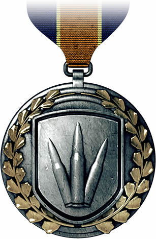 File:Assault Rifle Medal.jpg