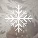 BFV Frozen Fir Camo