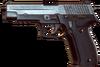 Bfhl p226