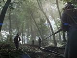 Bosque de Argonne