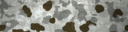BF4 Flecktarn Snow Paint