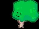Tree wiki pose
