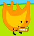 Firey Gonna Wrap or Eats the Candy Bar