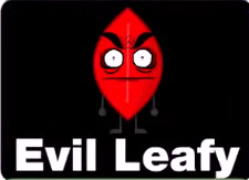File:Evil leafy mini.png