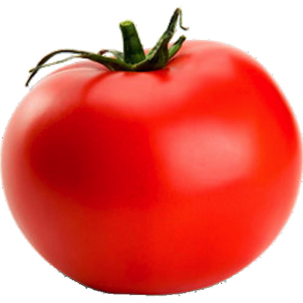 Image Tomato Png Battle For Dream Island Wiki Fandom