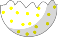Egg bottom