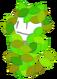 LeafyDavid