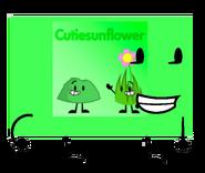 Cutiesunflower New Look
