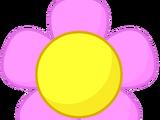 Flower/Gallery
