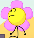 My flower folder is expanding