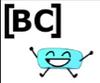 BFB Voting BC