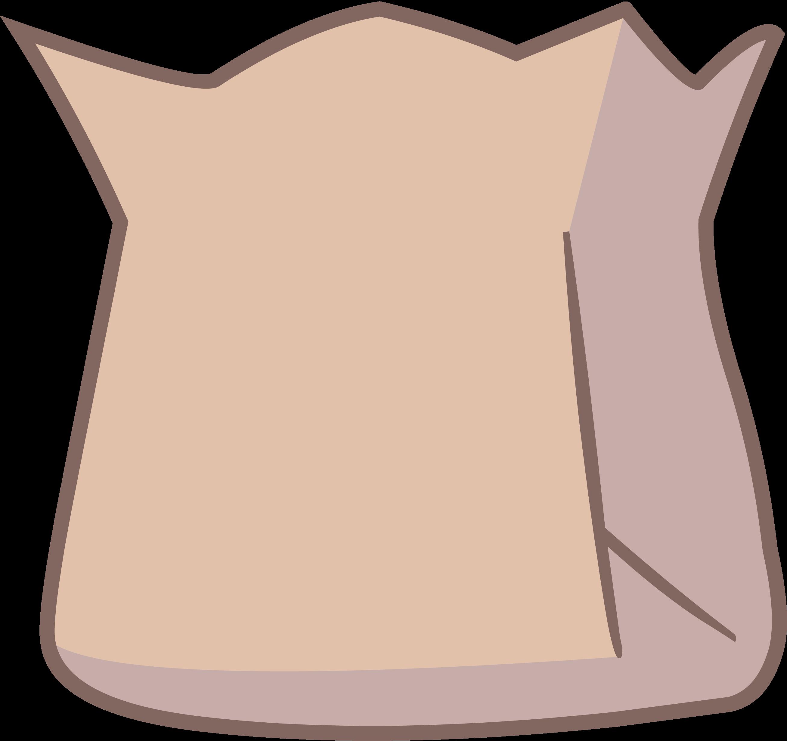 Barf Bag with no Barf