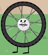 Cary Bike Wheel