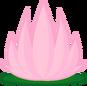 9b lotusflower