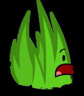 Grassy bfdi14