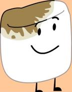 Marshmallow 1.1