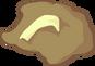 2b fossil