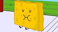 Spongy Blinked