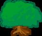 2b shrub